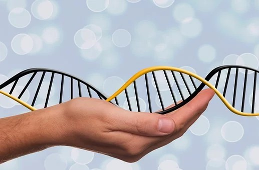 Test ADN France : comment l'acheter ?
