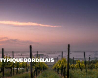 Le Saint-Julien : Le vin rouge Bordelais d'une qualité exceptionnelle