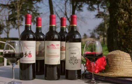 vin rouge saint julien